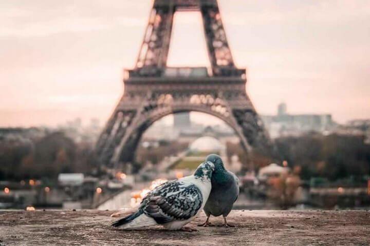 Idées de visites romantiques à Paris