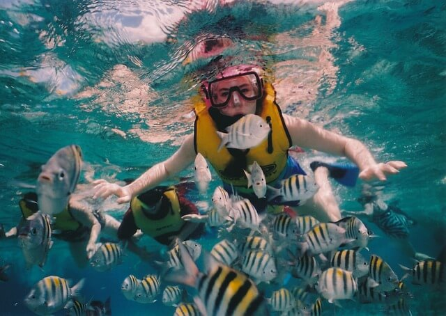 snorkeling mexique