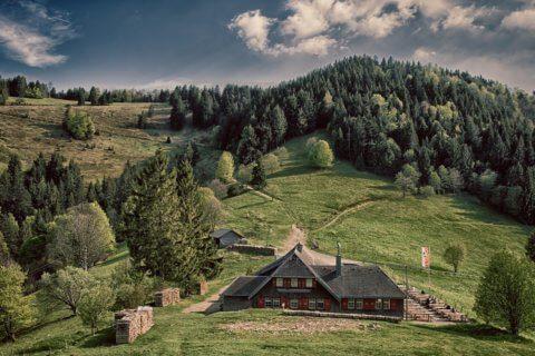 Voyage en Allemagne : à la conquête de la Forêt-Noire